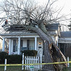 Stephen Wallace/Contributer-Lockport, NY-A fallen tree lays on the collapsed roof of 220 Erie Street.