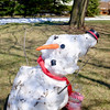 Joed Viera/Staff Photographer Barker, NY-A melting snowman on a Quaker Road lawn bides his time on warm second day of spring.
