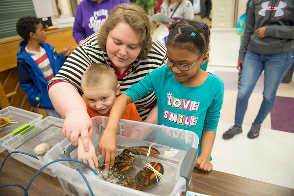 JOED VIERA/STAFF PHOTOGRAPHER-Lockport, NY- Caroline Laubacker and her son Tristin Laubacker, 4, join Christiana Howard, 8, in petting a lobster in a touch tank from the Niagara Falls Aquarium during the Family Literacy Night and Fitness Fair at North Park.