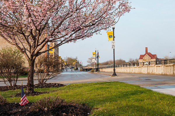 JOED VIERA/STAFF PHOTOGRAPHER-Lockport, NY-A cherry blossom tree blooms by the Locks.