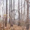 04-14-2017_Wildfire_PDO_013