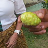 NONI FRUIT.  VERY HEALTHY
