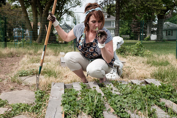JOED VIERA/STAFF PHOTOGRAPHER-Lockport, NY-Kathy O'Keefe smells mint in her garden.