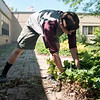 JOED VIERA/STAFF PHOTOGRAPHER-Lockport, NY-Barker High School sophmore and Boy Scout John Patrick Dwyer, 17,  beautifies the school's courtyard for his Eagle Scout project.