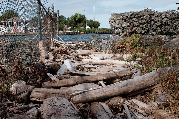Joed Viera/Staff Photographer-David Hedley is planning on clearing out the pathway to the public pier which runs alongside the Hedley Boat Co's property in Olcott by September.
