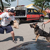 JOED VIERA/STAFF PHOTOGRAPHER- Niagara County Sheriffs Deputy Richard Bull holds onto EJ the Sheriffs Department's new K9 as he pulls him towards decoy Sean Domin during a demonstration at the Niagara County Fair.