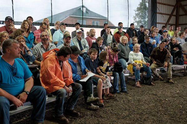 JOED VIERA/STAFF PHOTOGRAPHER-A crowd gathers for the auction at the Niagara County Fair.
