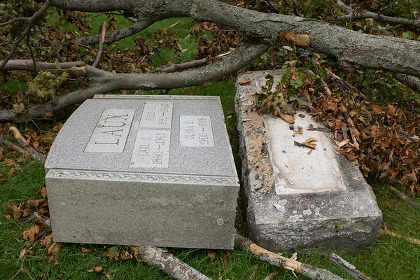 JOED VIERA/STAFF PHOTOGRAPHER-A large tree branch fell and damaged tombstones at Cold Springs Cemetary.