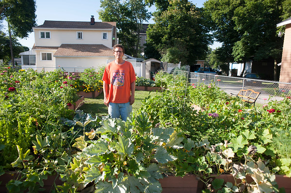 JOED VIERA/STAFF PHOTOGRAPHER-Lockport, NY-JJ Perkins  shows off his plot at Imagine Gardens on Ontario Street.