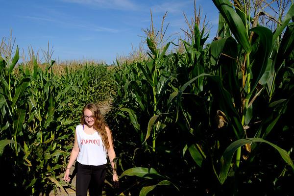 Joed Viera/Staff Photographer-Operator Kate Surdej walks through the Cabria Corn Maze.