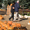 Joed Viera/Staff Photographer-Caregiver Cheryl Penkalski walks Harold Box through a pumpkin patch at Becker Farms.