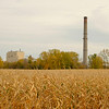Joed Viera/Staff Photographer-A smokestack from the coal plant rises over a cornfield.
