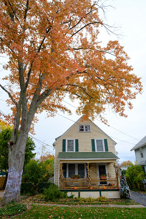 Joed Viera/Staff Photographer-Leaves change color over a Rochester Street Home.