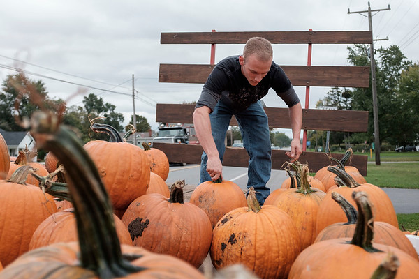 Joed Viera/Staff Photographer-Marshall Nichols sorts pumpkins outside his home at 7752 Ridge Road. Nichols is selling the gourds between $2 and $8. Steve Reiners, a Cornell University horticulture professor reportedly said that this years pumpkins benefited from September's warm and dry weather. His advice for pumkin purchasers is to look for a sturdy stem and avoid pumpkins with soft spots.