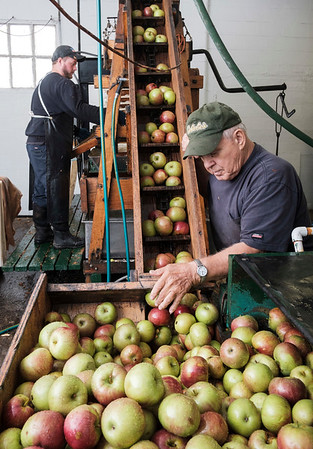 Joed Viera/Staff Photographer- Nate Hall presses cider as Lou Hoke helps apples onto an elevator at Hall's Apple Farm. The pair is working with a wooden apple cider press in use at the farm since 1971.