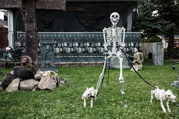 Joed Viera/Staff Photographer-A skeleton walks a pair of deceased dogs on Mary Penright's terror filled halloween lawn. Penright's son in law Mike Stawick has been decorating their residences with nightmare inducing displays for close to a decade. To see and tour the haunted yards head over to 25 and 26 Crosby Road.
