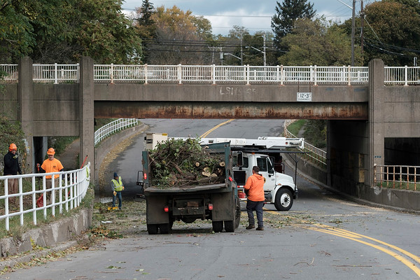 Joed Viera/Staff Photographer-Lockport City workers clean up cut branches on Gooding Street.