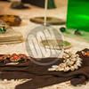 11-11-2017_Garden Club Vintage Fashion Show_OCN_JLK_004