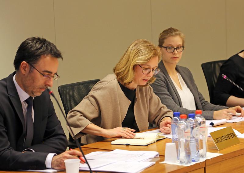 Mr Stefan Barriga, Deputy Head of Mission, Mission of Liechtenstein to the EU; Ambassador Sabine Monauni, Head of the Mission of the Principality of Liechtenstein to the EU