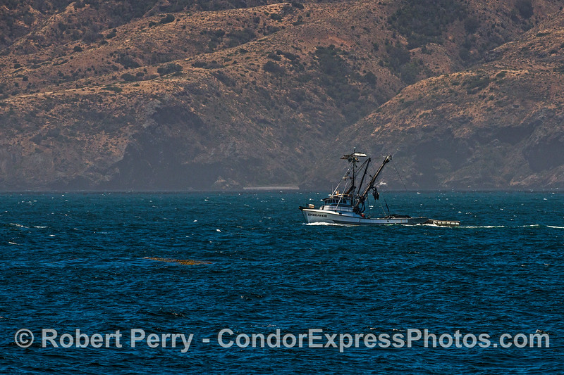 "Purse seinter ""Endeavor"" heading east along the north face of Santa Cruz Island."
