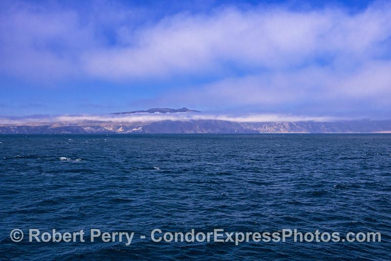 Windy day near Santa Cruz Island.