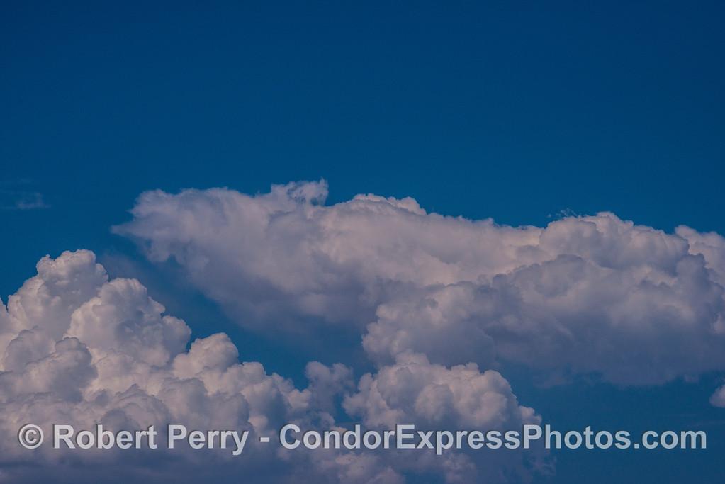 Eric's humpback whale cloud.