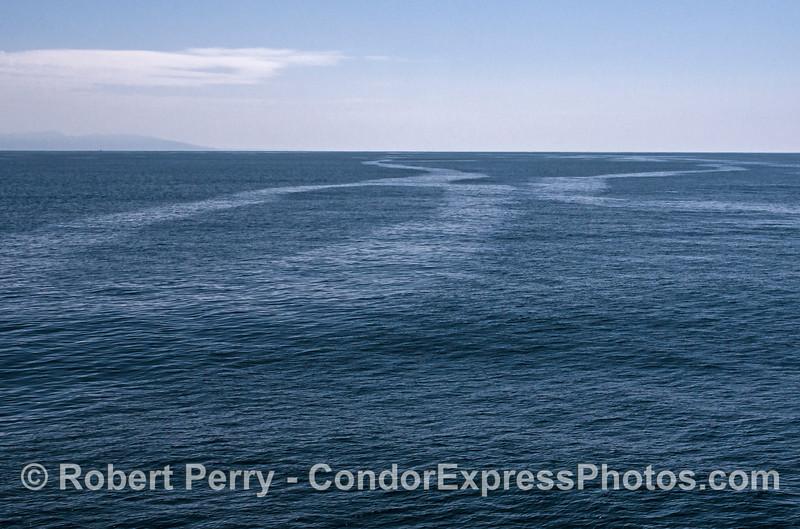 Unusual slick patterns - oceanic fronts.