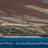 San Miguel Island - southeast - Pocket beach with California sea lions