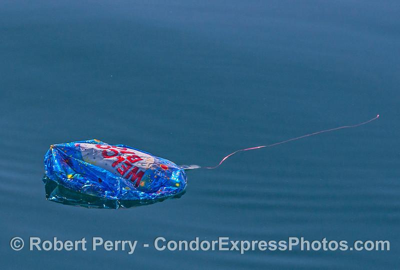 Mylar balloon debris - prior to being retrieved