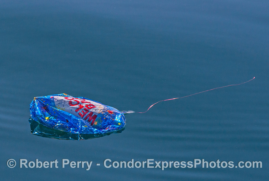 Mylar balloon debris - prior to being retrieved