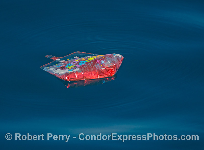 Happy Birthday - you just polluted the ocean with your helium Mylar balloon trash.