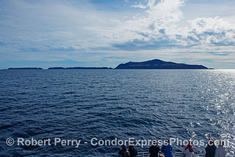 Whale watchers get a great view of Anacapa Island.