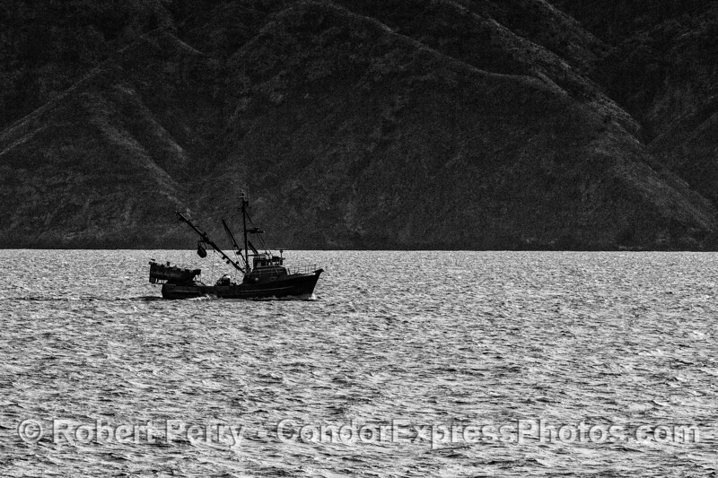 Black and white study - squid seiner at Santa Cruz Island.