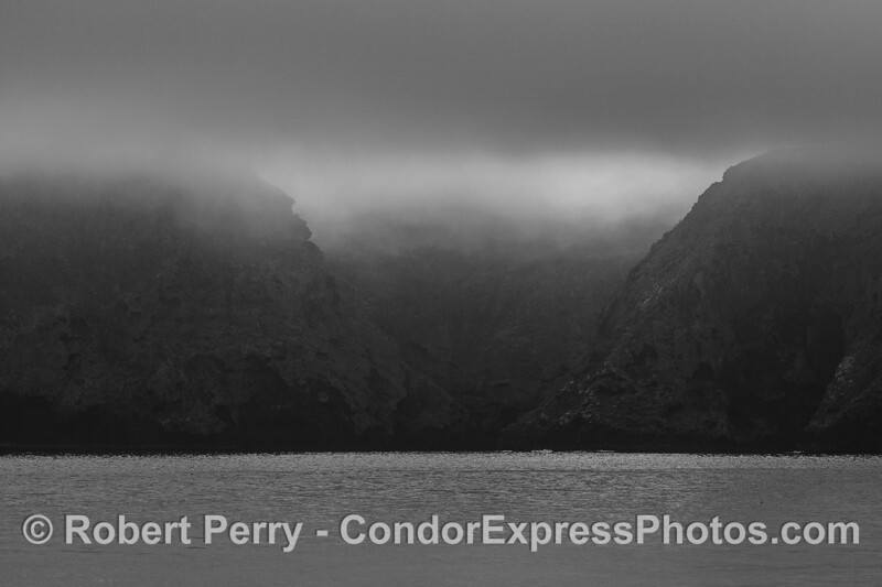 Fog shrouds sea cliffs of Santa Cruz Island.