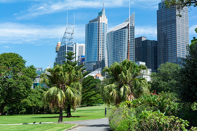 Sydney downtown from the Botanical gardens