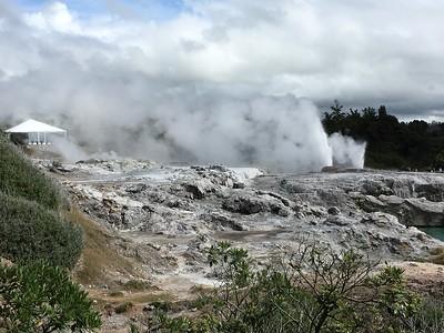 Rotorua, NZ.  Geysers