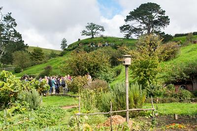 The Shire, Hobbiton village near Matamata, New Zealand