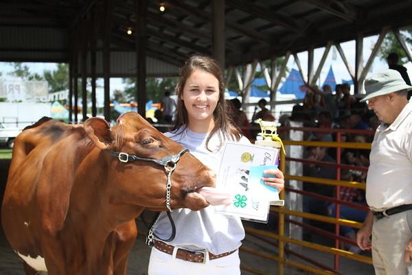 2017 Benton County Fair Dairy Show