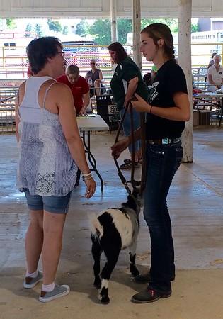 2017 Benton County Fair Dog Show