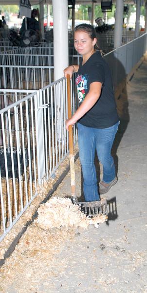 2017 Benton County Fair Meat Goat Show