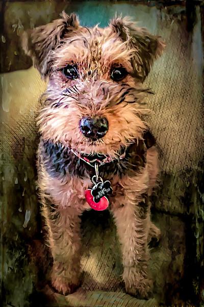 Mabel Portrait