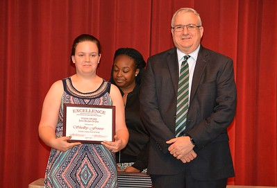 Shelby Froese accepts a 2017 STAND Award from DCSD Superintendent Dr. Eddie Ingram.