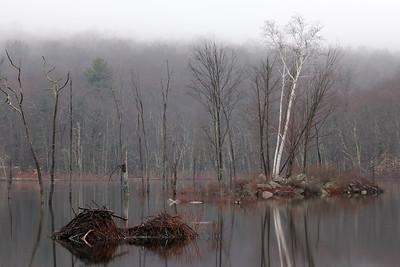 Del Reeves Pond