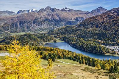 Goldener Oktober im Engadin - Lej da S. Murezzan