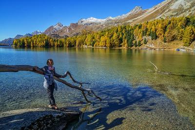 Goldener Oktober im Engadin - Silsersee