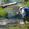 Crossing a branch of Falls Creek