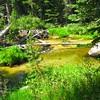 Robinson Creek pool