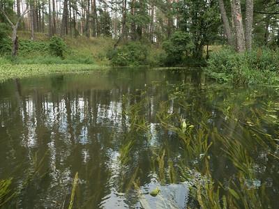 Ūla lake