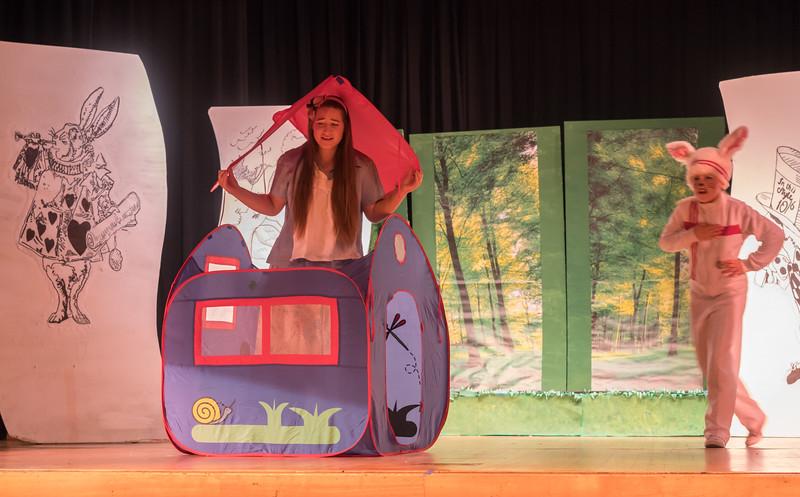 Alice in Wonderland Mar 2017-27