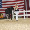 AllAmerican17_Holstein_IMG_2364